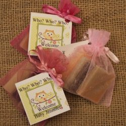 Baby Shower Samplers